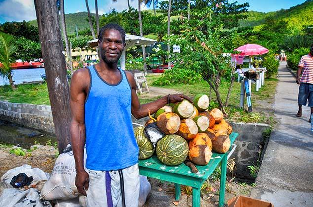 coconuts bequia