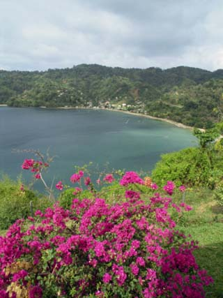 Charlotteville, Tobago, West Indies, Caribbean, Central America