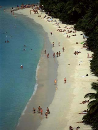 Trunk Bay, St. John, U.S. Virgin Islands, West Indies, Caribbean, Central America