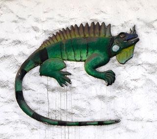 lizard sign puerto vallarta mexico