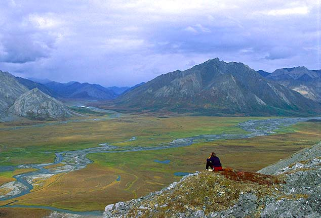 arctic national wildlife refuge alaska