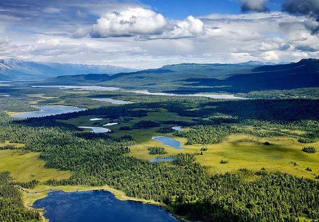 denali tundra lakes