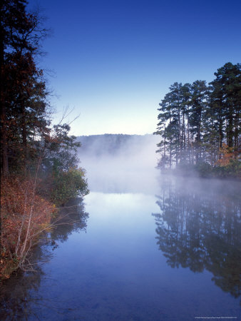 morning fog, arkansas
