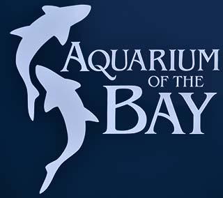 aquarium by the bay san francisco