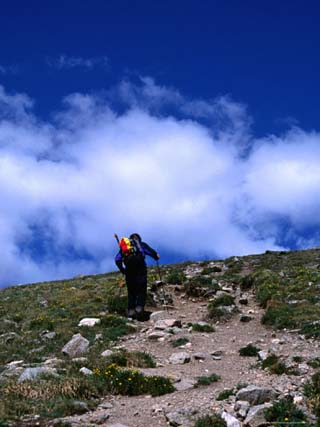 Climber Heading to the Summit of Mt. Elbert, Colorado, USA