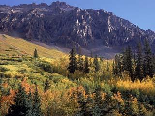 Autumn at San Miguel Mts, Durango, CO