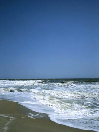 A Beach in Delaware with Rough Seas and Blue Skies