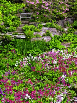 Quarry Garden, Wilmington, Delaware, USA, Deleware