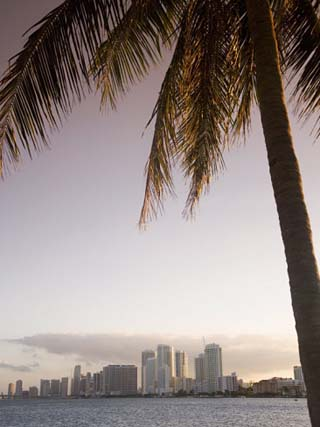 Downtown Miami Skyline, Miami, Florida, United States of America, North America