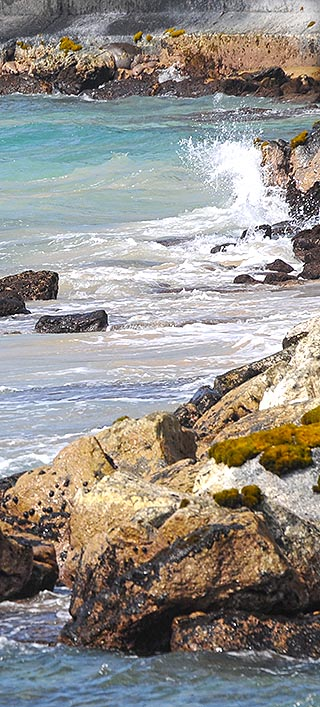 rocky coast big island