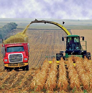 Iowa corn harvest