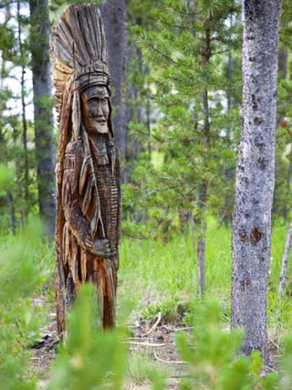 Indian Carving in Tree, Sawtooth National Recreation Area, Idaho, USA