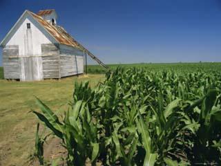 Corn Barn, Hudson, Illinois, Mid West, USA