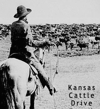 kansas cattle drive
