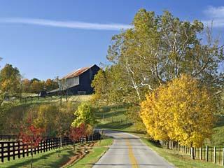 Rural Road Through Bluegrass in Autumn Near Lexington, Kentucky, USA