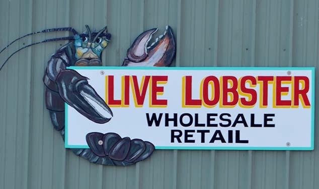 lobster fishing gloucester