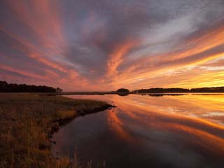 Sunset over a Chesapeake Bay Shoreline