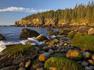 Polished Rocks at Otter Cliffs, Acadia National Park, Maine, USA