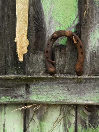 Rusty Horseshoe on Old Fence, Montana, USA