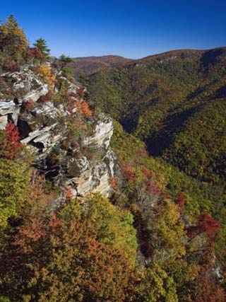 Early Autumn View of Linville Gorge