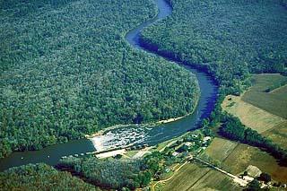 cape fear river