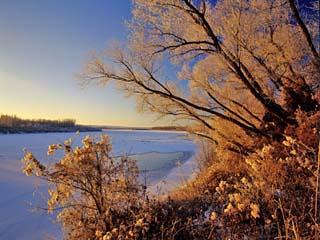 Winter on the Yellowstone River Near Cartwright, North Dakota, USA