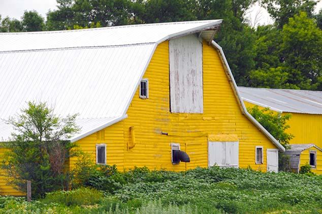 yellow barn north dakota