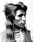shoshone indians