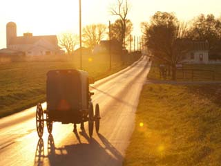Horse and Buggy in Amish Community