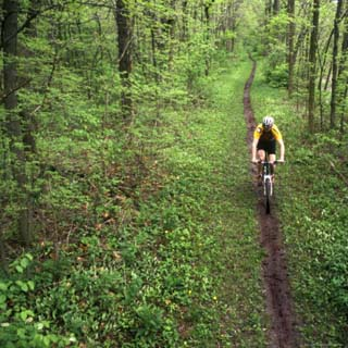 Mountain Biker on the Erie Canal Trail, Defiance, Ohio, USA