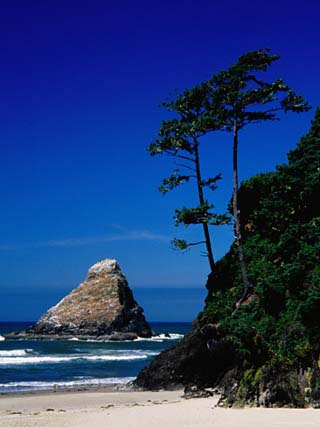 Rocky Outcrop at Heceta Head State Beach, Near Florence, Florence, Oregon