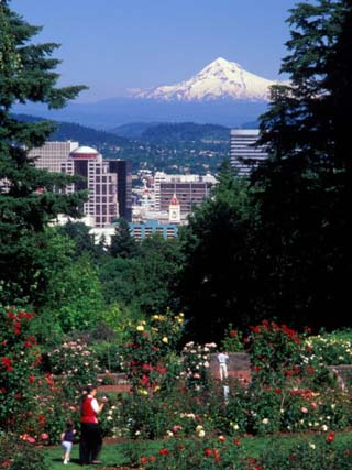 People at the Washington Park Rose Test Gardens with Mt Hood, Portland, Oregon, USA