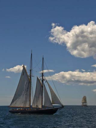 Tall Ships Sailing at the Parade of Sail in Newport, Rhode Island, USA