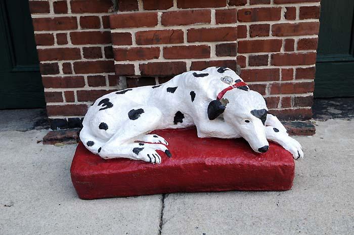 fire house dog charleston south carolina
