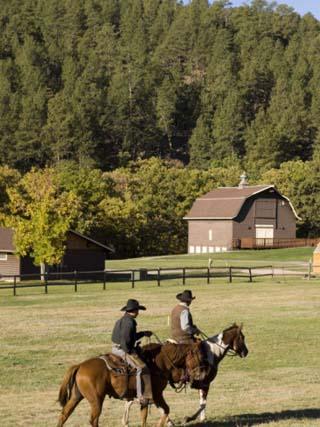 Custer State Park, Black Hills, South Dakota, United States of America, North America