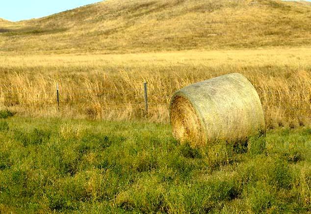bale of hay south dakota