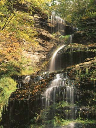 View of Cathedral Falls in Autumn, West Virginia, USA