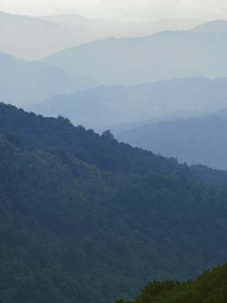 Mt. Rogers National Recreation Area, Jefferson National Forest, Virginia, USA