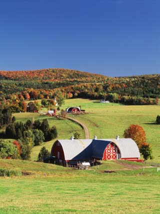 Barnet, View of Farm in Autumn, Northeast Kingdom, Vermont, USA