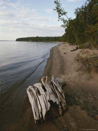 A Shot Down the Shoreline of One of the Apostle Islands