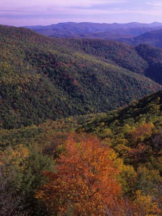 Otter Creek Wilderness from Table Rock, Monongahela National Forest, West Virginia, USA