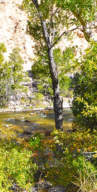 creek view wyoming