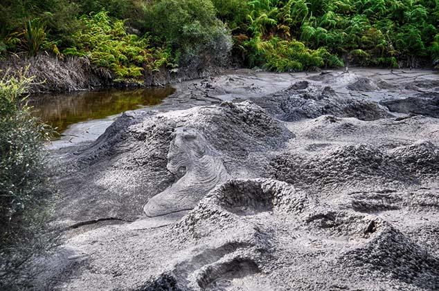 mud pool rotorua
