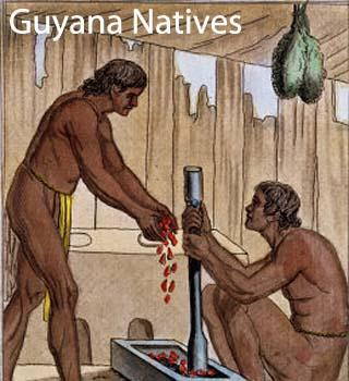 guyana natives