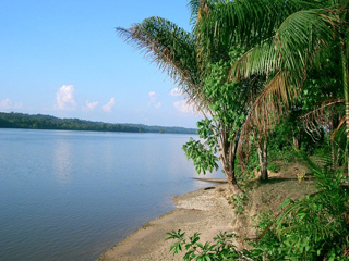 Looking over the Maroni River to Suriname from French Guiana