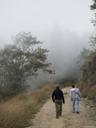 Two Men Walk Up a Foggy, Andean Dirt Road, Venezuela